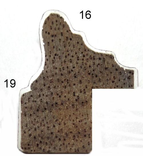 Profil 146