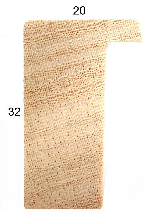 Profil 221